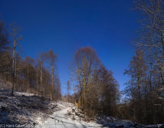 von Brilond Wald rauf auf den Langenberg