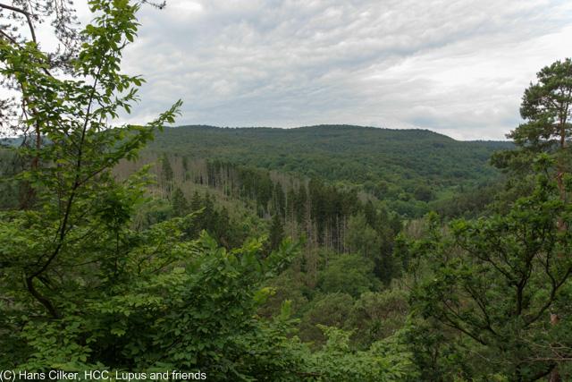 von Waldeck nach Blossenberg