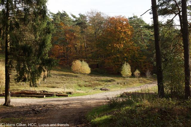 vom Parkplatz unter der Autobahn bis rauf nach Oerlinghausen
