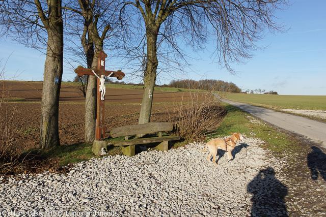 vom Parkplatz Kleiner Viadukt über Schießplatz und Altenbeken