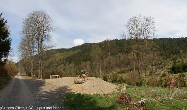 von Brilon Wald nach Willingen und über den Langenberg zurück