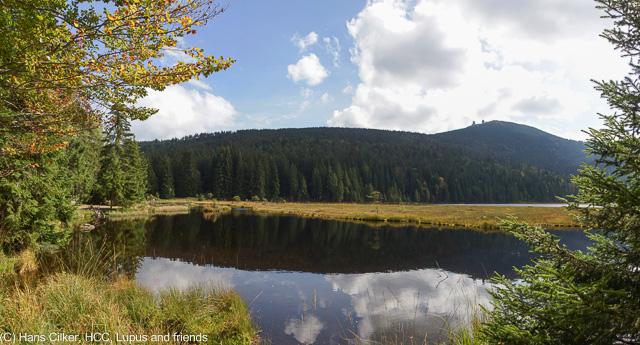 der Grosse Arber ruft und mit ihm seine Seen