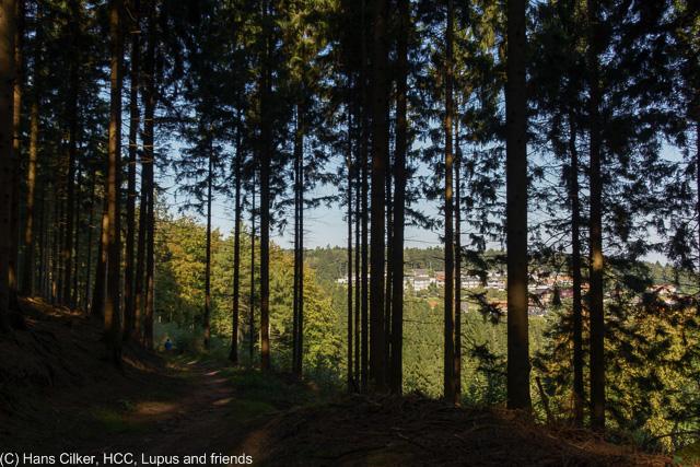 von Holzhausen nach Georgsmarienhütte