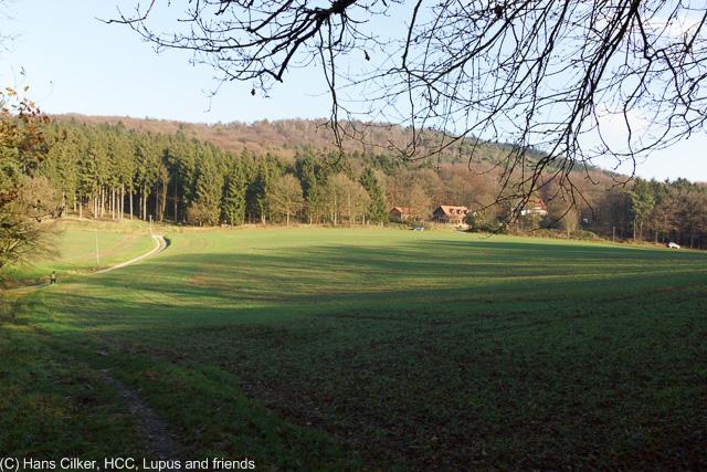 von Steinhagen zum Waldgasthof Bergfrieden