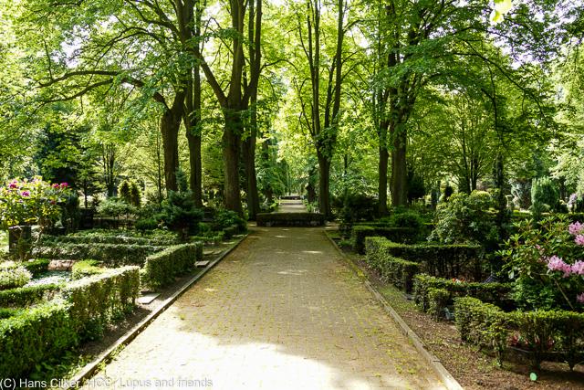 Wir starten in Lübbecke und gehen über den Friedhof rauf zum Reineberg und dem Land Cafe, dann über die Goebenstrasse zurück, die ganzen Industriebauten in Lübbecke, sie sind verschwunden.