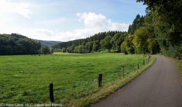 Wir starten in Padberg und gehen erst mal Richtung Marsberg, dann beim alten Stollen wechseln wir auf den Rückweg bis zur Diemel, von da wieder zum Auto, aber der Weg ist grausam, durch den Wald statt Aussicht, Kapelle mit Einsturzgefahr und dann ist die Markierung weg.