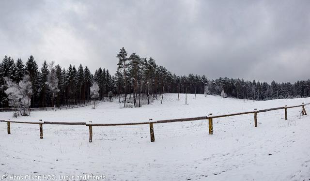 der erste Schnee in diesem Winter, noch ist der Untergrund sehr matschig, aber wenigstens etwas weiß.