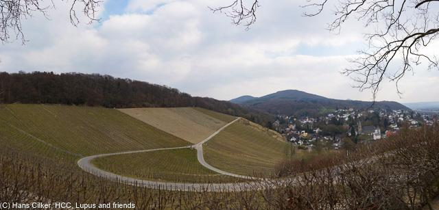 hatte es vorgestern schon Wald, heutre auch, was daran Rheinsteig ist wissen nur die Werbe Fuzzis, aber Bonn entschädigt dann doch und wir haben fertig.