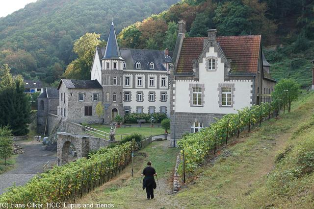 Durchwachsene Geschichte, zwar ist der Weg nicht schlecht, aber für unseren Geschmack ist verdammt viel Walfd drin und weder Rhein noch Burg besonders oft, eigentlich sehr selten.