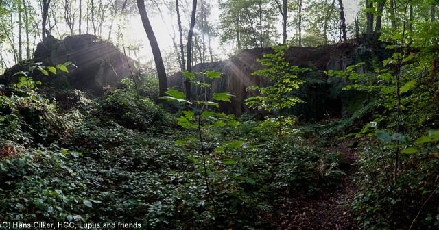 Wieder sehr durchwachsen, zu Behinn eine tolle Sicht mit Klippenstellen, dann ein Steinbruch aus der Römerzeit, dann lange nix und dann der perfekte Blick auf Mühlheim