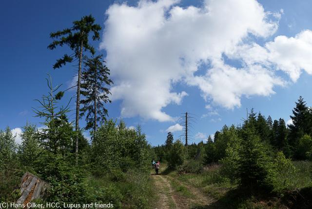 Es fängt echt cool an, tolles Wetter, aber leider haut es uns auf den letzten Kilometern sowas von auf das Haupt, es schüttet und dann ist ein teil des Weges unpassierbar.