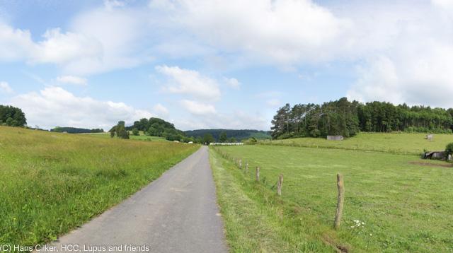 von Merlsheim nach Steinheim