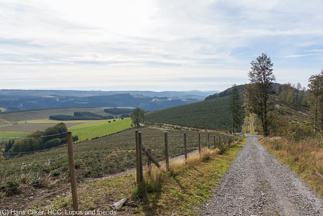 vom Nordhang über den Kahlen Asten nach Oberkirchen