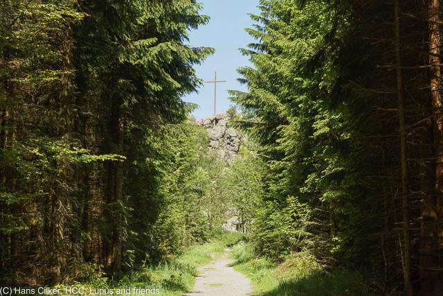 von Brilon Wald zu den Bruchhäuser Steinen