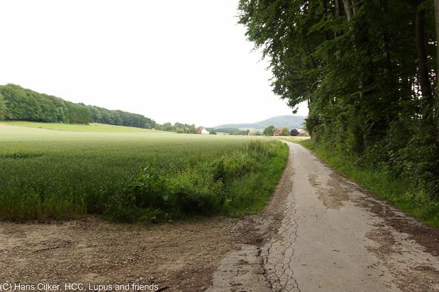 von Hesseltal nach Kirchdornberg