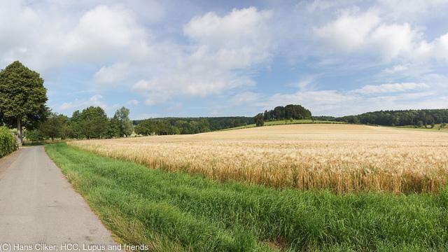 von Alhausen nach Hermannsborn und Driburg