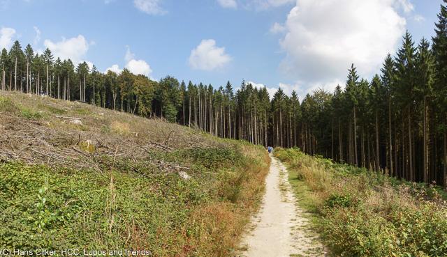 von Bad Iburg bis zur Sudenfelder Strasse
