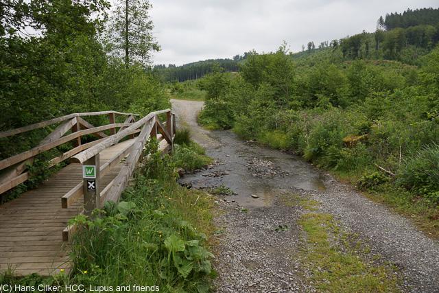 Das war nicht prall, erst nur Wald, dann wegen der Baustelle ein neuer Weg und der war echt nur schlecht, nun ja, mal wieder eine Etappe zum Weglaufen.