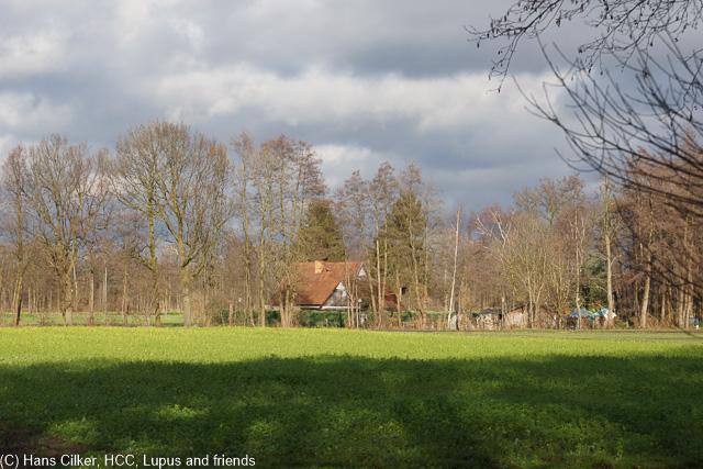 Einmal um das Steinhorster Becken und dann weiter durch Steinhorst und von hinten zurück zum Parkplatz.
