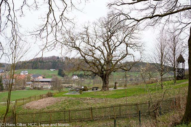 wir parken an der Aabachtalsperre und durch den Wald geht es hinauf auf die Höhen über Bad Wünnenberg, dann auf dem Sintfeld Weg kommt Christo, die neue Brücke. Der Weg selber klasse mit dem Kurpatk und der Talsperre.