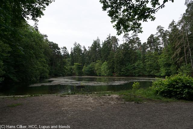 Ulli war hier schon früher oft unterwegs, da schauen wir mal wie es so aussieht, allerdings war auch bei uns ein WE Ziel die Donoper Teiche.